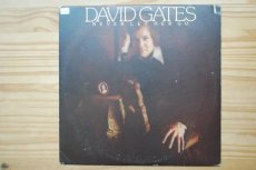 GATES, DAVID - NEVER LET HER GO