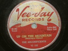 MAGNIFICIENTS - UP ON THE MOUNTAIN